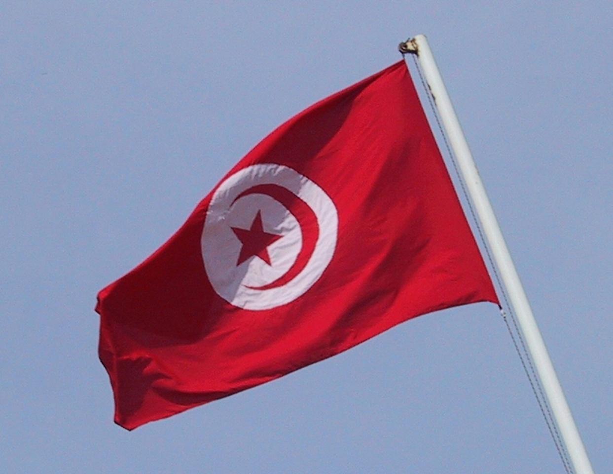 20030401_1640-Tunesische_Fahne1